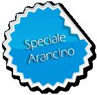 Special Arancino